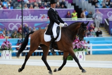 MARK TODD (NZL) riding Campino in the Eventing as Team & Individual, 3rd after the Dressage phase of the Eventing competition