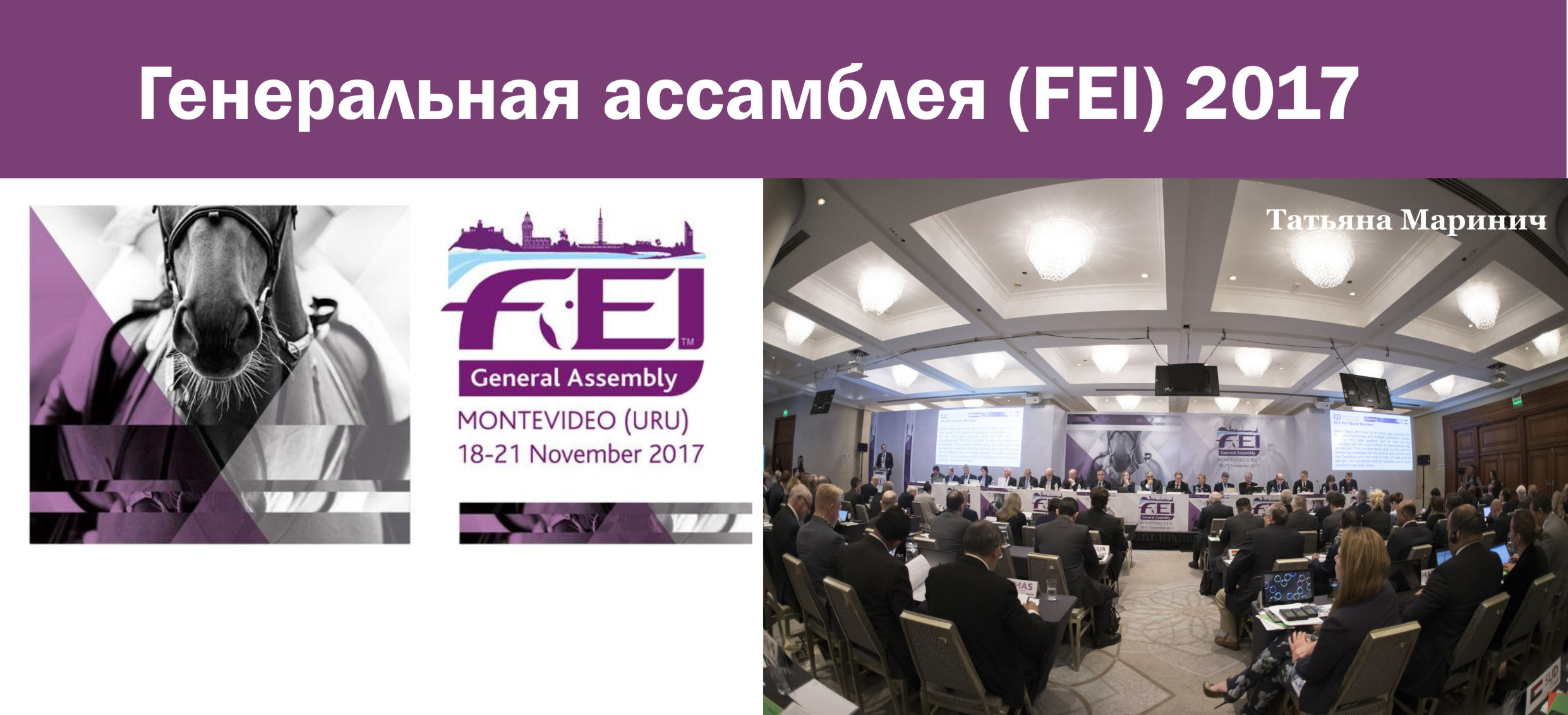 Генеральная ассамблея (FEI) 2017 (выпуск журнала №39)