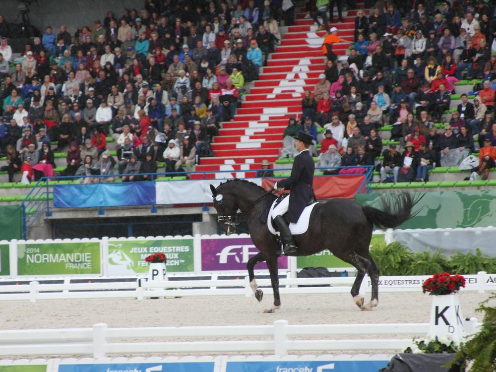 Всемирные конные игры 2014