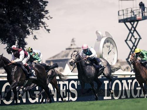 Cкачки с участием лошадей Longines DolceVita